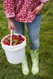拿着桶新鲜的草莓的妇女 库存照片