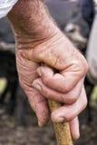 拿着棍子的老农夫手 免版税库存照片