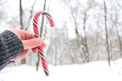 拿着棒棒糖的手 斯诺伊圣诞节风景 免版税库存照片
