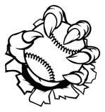拿着棒球球的妖怪或动物爪 免版税库存图片
