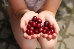 拿着棕榈红色樱桃的女孩 免版税图库摄影