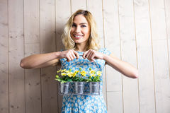 拿着植物罐的篮子妇女反对纹理背景 免版税库存图片