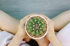 拿着植物仙人掌的人的手,保存行星概念 库存图片