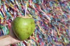 拿着椰树Gelado愿望丝带萨尔瓦多巴伊亚的巴西手 免版税图库摄影