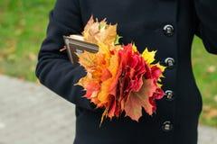 拿着槭树叶子和一本书的外套的女孩在澳大利亚的公园 免版税库存照片