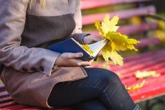拿着槭树叶子和一本书的外套的女孩在澳大利亚的公园 免版税图库摄影