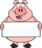 拿着横幅的愉快的猪漫画人物 免版税图库摄影