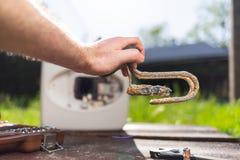 拿着水加热器元素的一个人被损坏从腐蚀 在背景中锅炉和草坪的看法 免版税库存照片