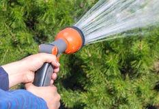 拿着水喷水隆头和浇灌绿色庭院的人的手 免版税库存图片