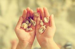 拿着海壳的儿童手 免版税库存照片