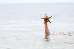 拿着海星的手 库存图片