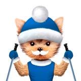 拿着滑雪棍子的滑稽的狗 圣诞节概念 免版税库存图片