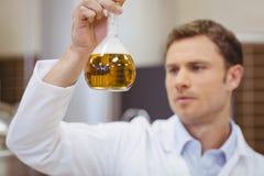 拿着烧杯用啤酒的被聚焦的科学家 免版税库存图片