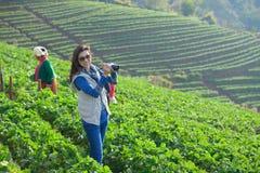 拿着照相机的Travele在morni的美丽的草莓农场 免版税图库摄影