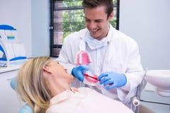 拿着牙齿模子的牙医由妇女在诊所 免版税库存图片