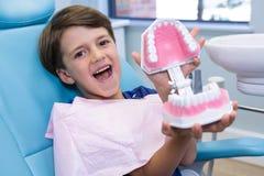 拿着牙齿模子的逗人喜爱的男孩画象 免版税图库摄影