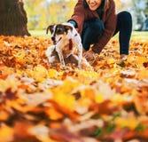 拿着狗的愉快的少妇户外在秋天 免版税库存图片