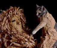 拿着猫的可怕的面具的人 免版税库存照片