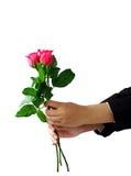 拿着玫瑰色花被隔绝的裁减路线的手 库存图片