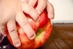 拿着甜红色苹果的婴孩手 免版税库存照片