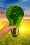 拿着生态电灯泡的手在日落 免版税库存照片