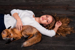 拿着由一个人受损伤并且在她和现在生活之前抢救作为以前的一个野生狐狸动物的一个年轻美丽的女孩 图库摄影