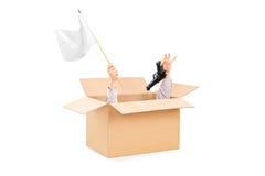 拿着白旗和枪在箱子里面的男性手 免版税库存照片