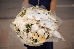 拿着白色兰花的花束女孩和香槟颜色牡丹和玫瑰 免版税库存照片