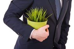 拿着盆的植物的商人。 库存图片