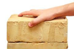 拿着砖的男性手 免版税库存图片