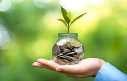 拿着硬币金钱盖子生长植物的商人手 种植生长在与过滤器作用的硬币,小的金钱外面增长和 图库摄影