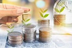 拿着硬币,树的两次曝光手生长在金钱,闹钟,储蓄存款,投资概念 库存图片