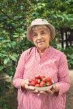拿着碗草莓的一个老妇人的画象 免版税图库摄影