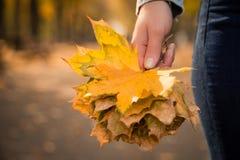拿着秋叶的女性手 免版税库存图片