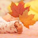 拿着秋叶的新出生的婴孩手 库存图片