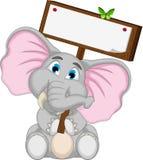 拿着空白的委员会的逗人喜爱的大象动画片 免版税库存照片