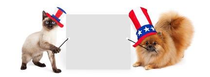 拿着空白的标志的美国独立日狗和猫 库存图片