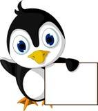 拿着空白的标志的逗人喜爱的小的企鹅动画片 库存照片