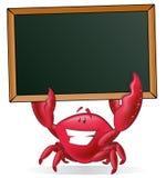 拿着空白的标志的逗人喜爱的螃蟹 库存图片