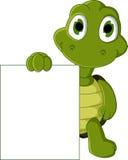 拿着空白的标志的逗人喜爱的绿海龟动画片 免版税库存图片