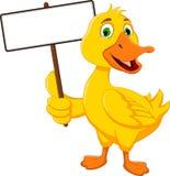 拿着空白的标志的滑稽的鸭子动画片 库存照片