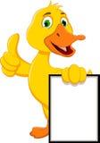 拿着空白的标志的滑稽的鸭子动画片 免版税库存照片
