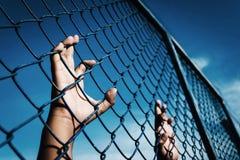 拿着笼子的男孩 免版税库存照片