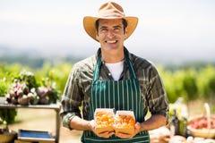 拿着箱果子的一位微笑的农夫的画象 库存照片