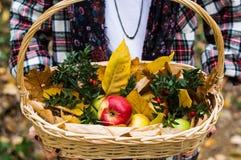 拿着篮子的女孩有很多苹果 免版税库存照片