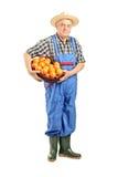 拿着篮子的男性农夫有很多蕃茄 免版税库存图片