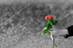 拿着红色玫瑰的手在模糊灰色的光和bokeh开花 库存照片