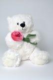 拿着红色玫瑰色玩具的胳膊熊 免版税库存照片