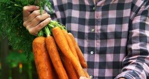 拿着红萝卜菜4k的成熟妇女 股票视频