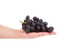 拿着红葡萄果子的手 库存照片